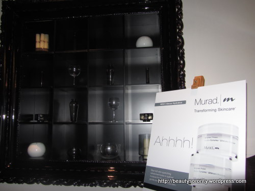 murad bloggers event