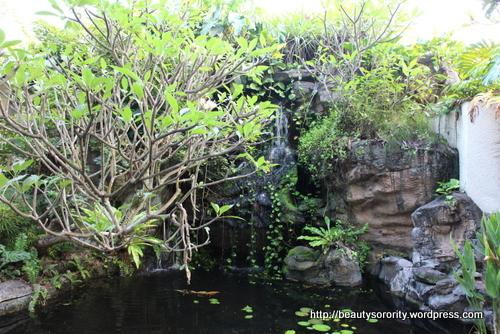 nice scenery at spa botanica