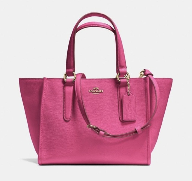 Coach MINI CROSBY CARRYALL IN LEATHER